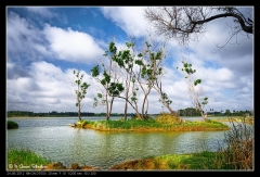 Muthanallur Lake